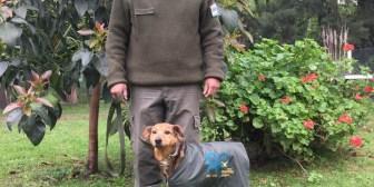 Argentina: el perro que esperó por años a su dueño fallecido, fue adoptado por Gendarmería y hoy es una estrella en desfiles militares