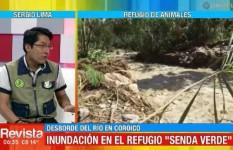 Refugio de animales de Coroico necesita apoyo tras ser afectado por la riada