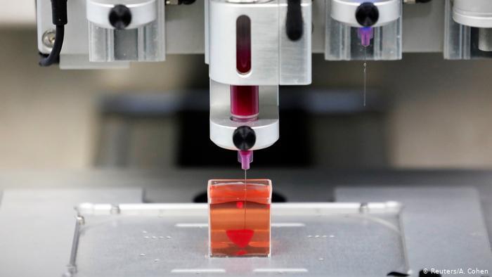 Los investigadores presentaron a la prensa ese corazón inerte del tamaño de una cereza inmerso en un líquido (Reuters/A. Cohen)