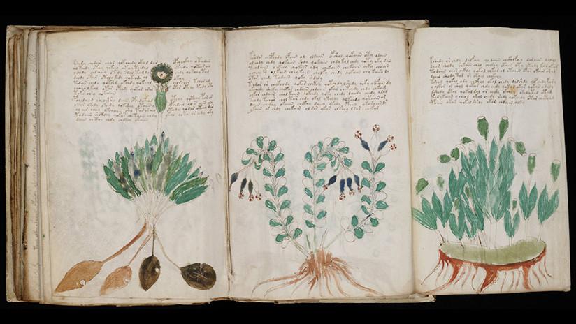 Un académico afirma haber descifrado el código del misterioso manuscrito Voynich