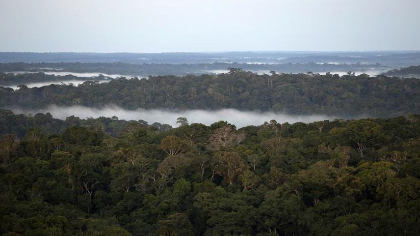 FOTO: Una tribu ecuatoriana gana el juicio contra el Gobierno y salva miles de hectáreas en la Amazonia