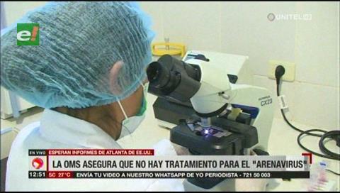 Organización Panamericana de Salud indica que no hay tratamiento para el arenavirus