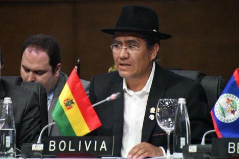 El canciller Diego Pary en la OEA. Foto:Cancillería