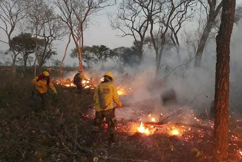 Equipos de rescate realizan trabajos para tratar de mitigar el fuego en la Chiquitania, Santa Cruz.