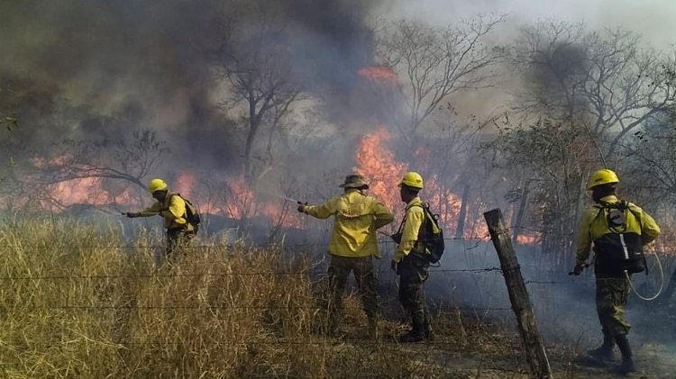 Incendios en Bolivia (AFP)