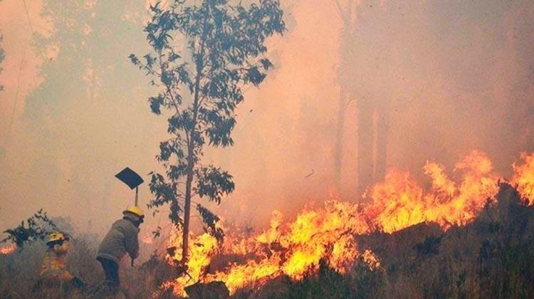incendio-chiquitania-bolivia