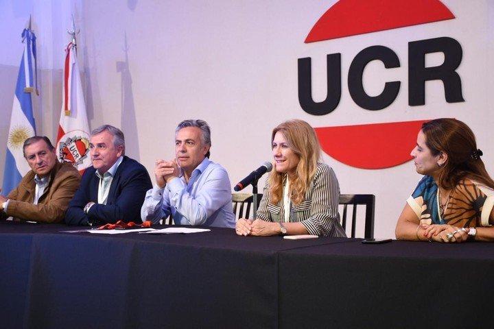 Alfredo Cornejo, titular de la UCR, y un duro comunciado sobre la situación de Evo Morales.