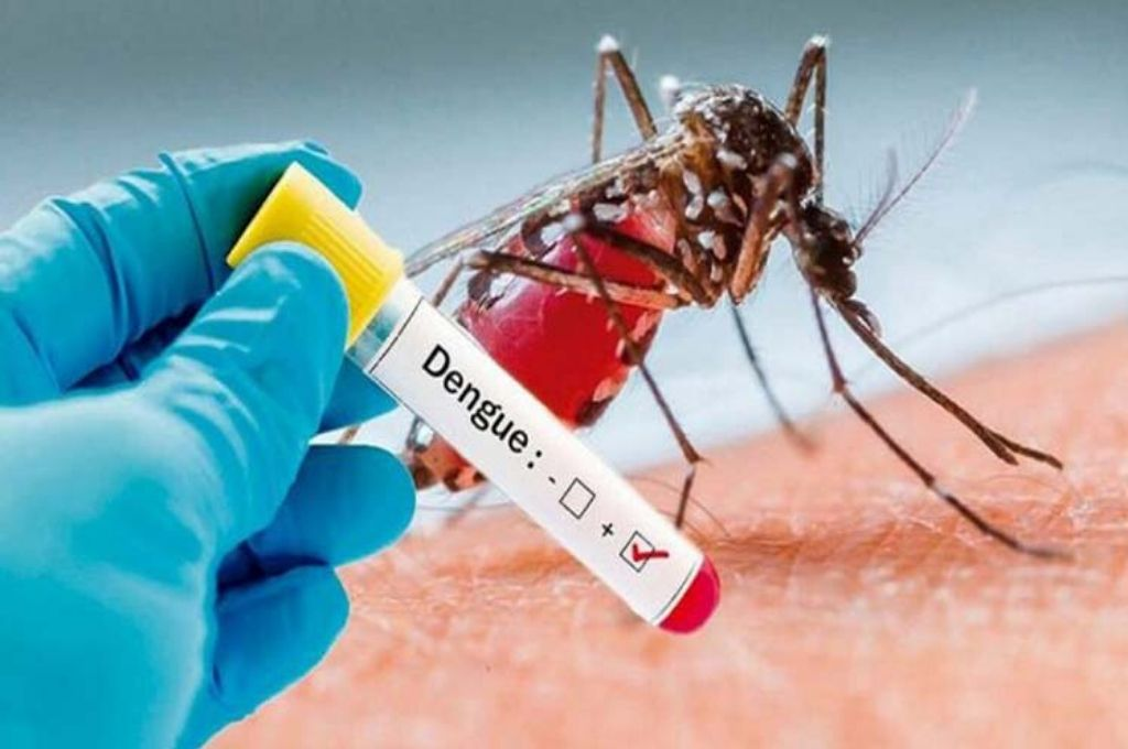 Imagen referencial del dengue