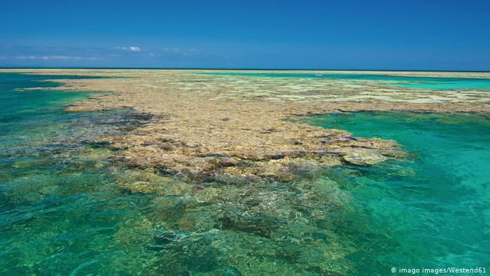 Vista de la Gran Barrera de Arrecifes de coral en Australia.