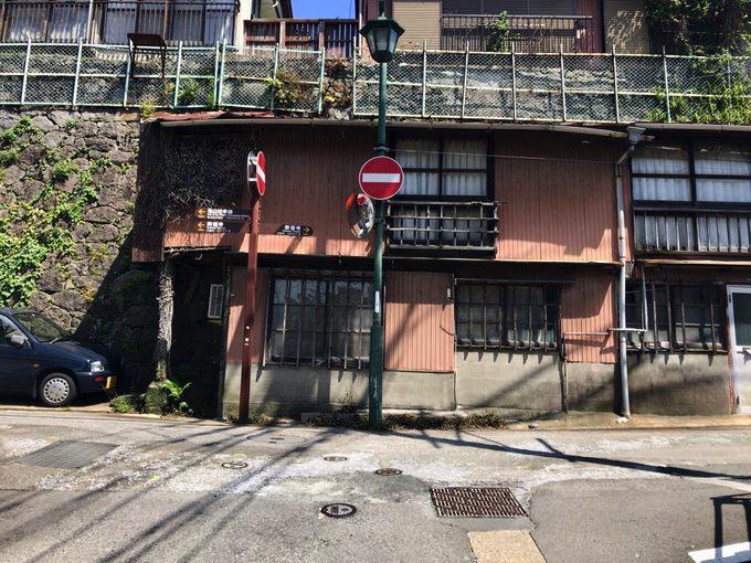 Kameyama 19