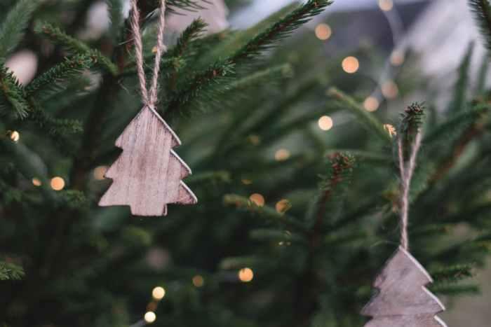 Heb je een echte kerstboom of een neppe?