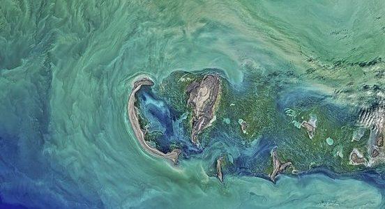 معلومات عن بحر قزوين