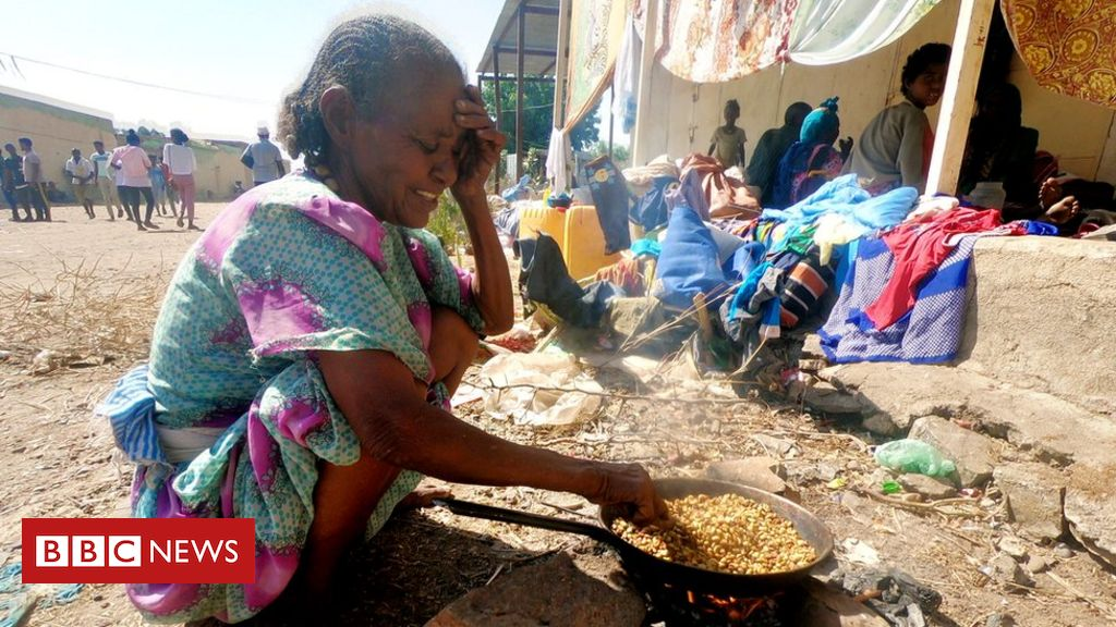 Ethiopia crisis: Aid agencies call for immediate ceasefire in Tigray