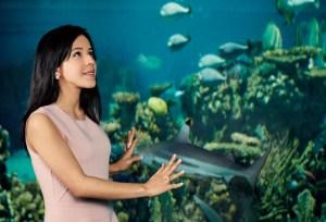 Daniela Fernadez à l'aquarium de Monterey