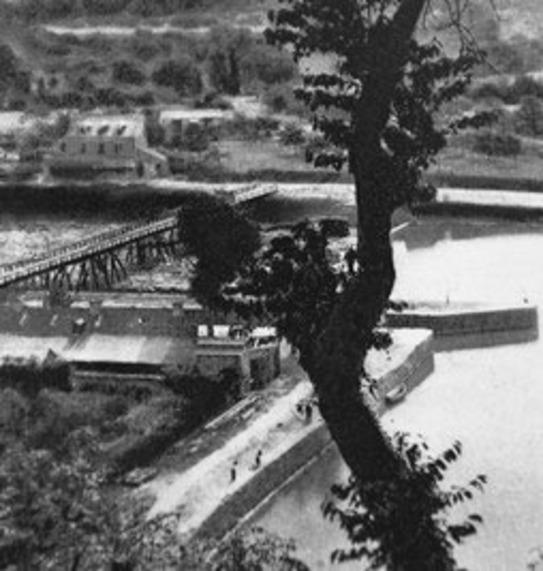 Peut être une image en noir et blanc de pont et arbre