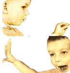 Borel-maisonny-image-png-sons