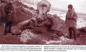 Les Mammouths - La disparition