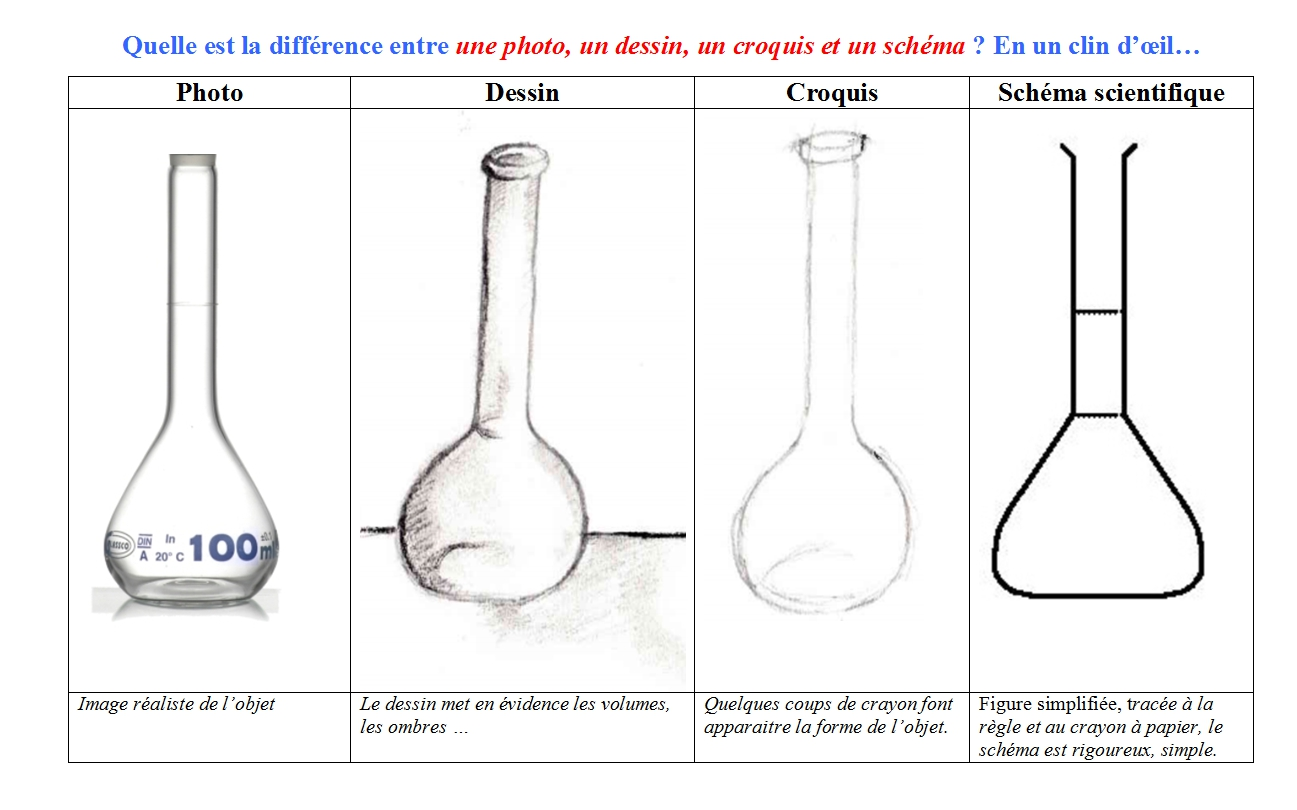 Croquis ou schma   Sciences Physiques Collge Activits Cours TP