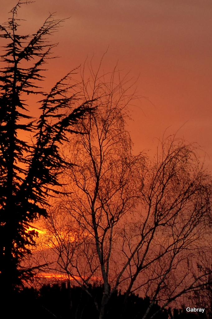 Coucher Du Soleil Toulouse : coucher, soleil, toulouse, Coucher, Soleil, Vieille-Toulouse, Gabray, Tolosan