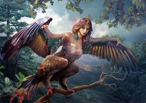 Les femmes oiseaux