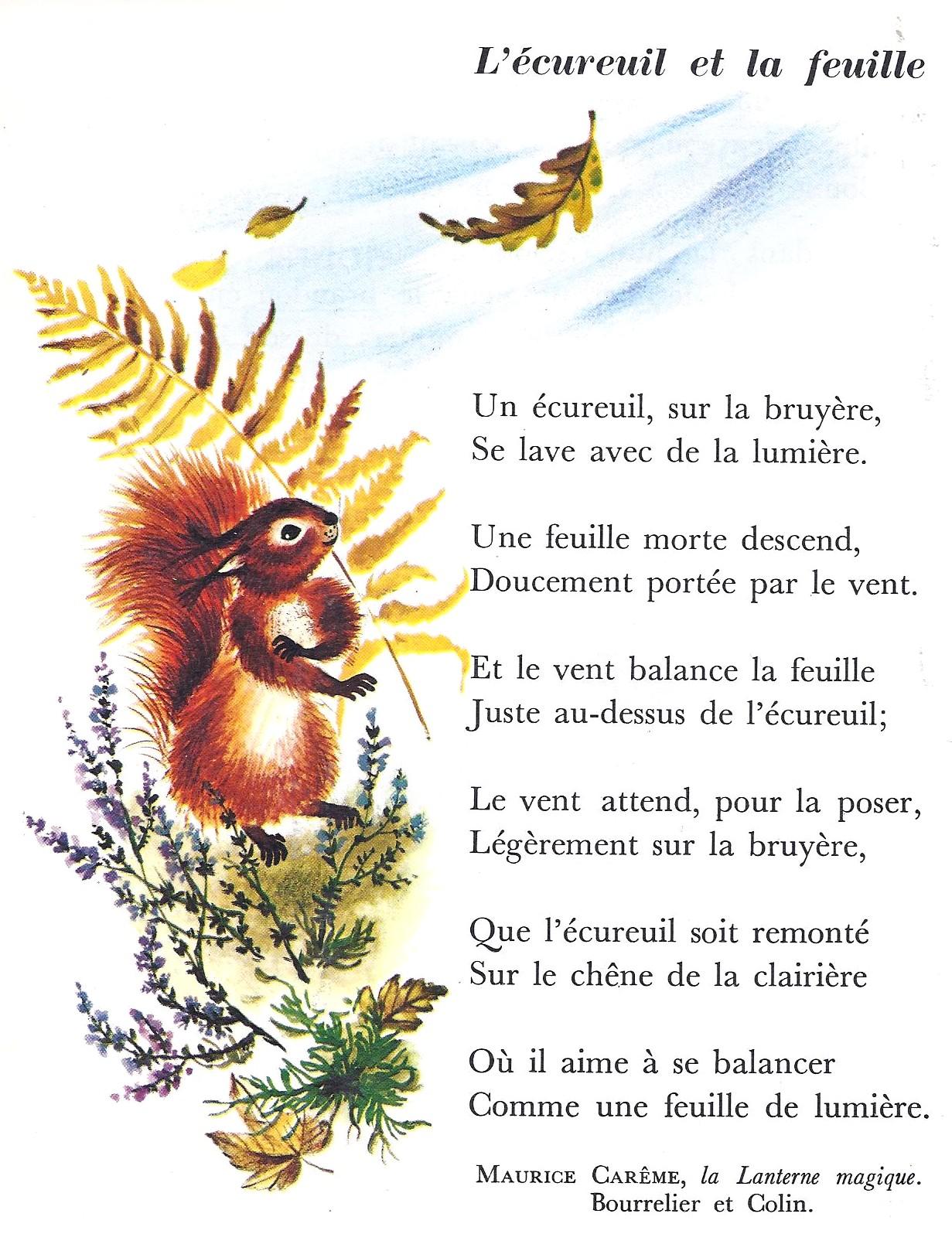 Poésie L écureuil Et La Feuille : poésie, écureuil, feuille, Maurice, Carême, L'écureuil, Feuille, (CP-CE1), Littérature, Primaire