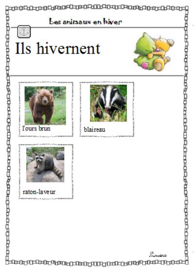 Les Animaux Qui Hibernent : animaux, hibernent, Animaux, Hiver, Ateliers, Classe