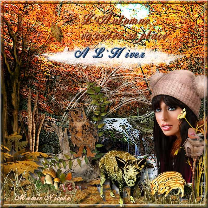 ♥♥ La fin de l'automne arrive♥♥