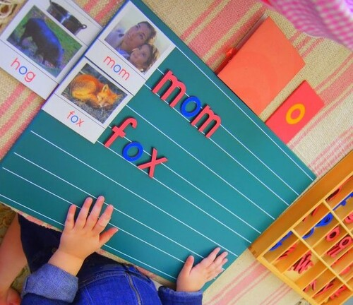 cartes de nomenclature montessori