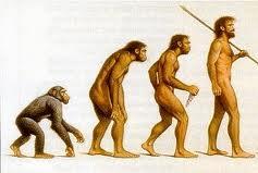 Aux origines de l'homme