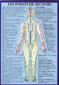 Localisation Des Points D Acupuncture : localisation, points, acupuncture, Planche, Points, D´alarme, Secours, (17x24, Librairie, Eklectic