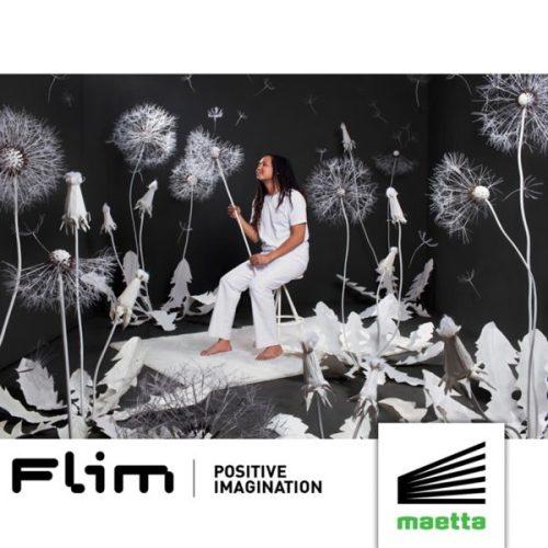 Flim - Positive Imagination [Techno]