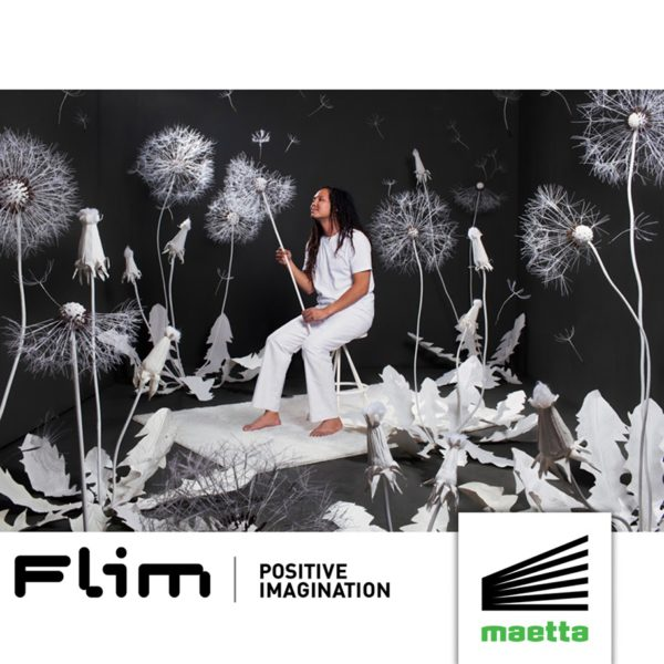 Flim - Positive Imagination