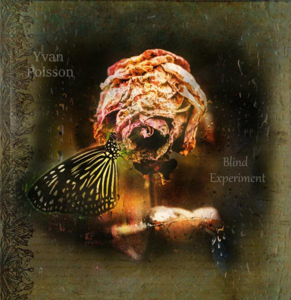 Yvan Poisson - Blind Experiment - EKM.CO