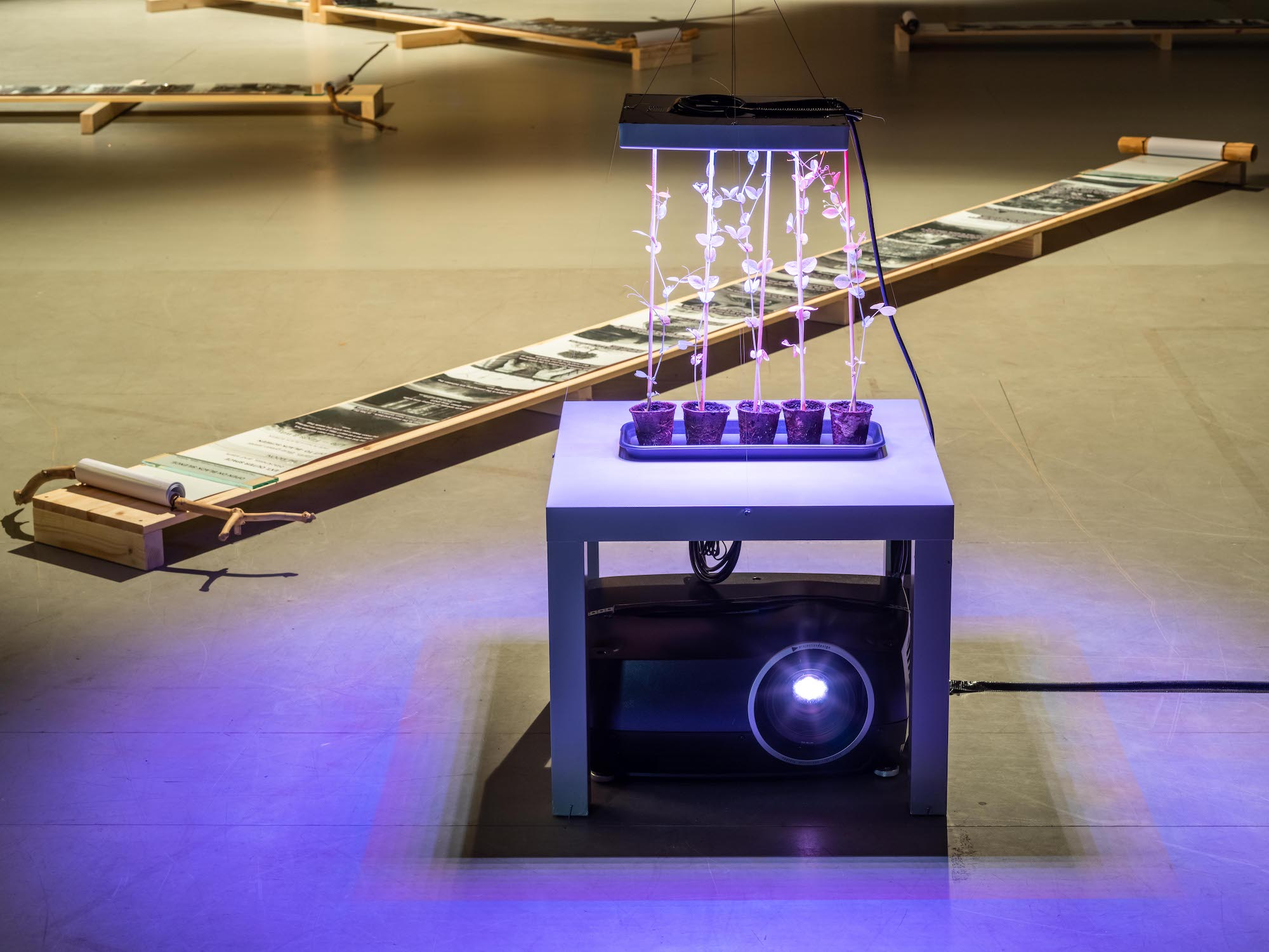 """Film NordGen NGB4018 """"Timo"""" (2017-2019) with variable dimensions to be installed site-specific in relation to surrounding space, lighting and other works."""