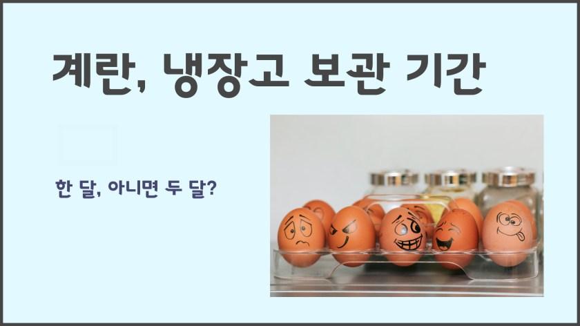 계란 냉장고 보관 기간