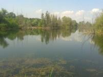 Bregov izvor1