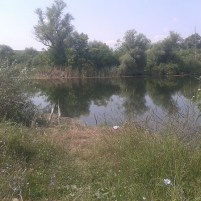 Bregov izvor2