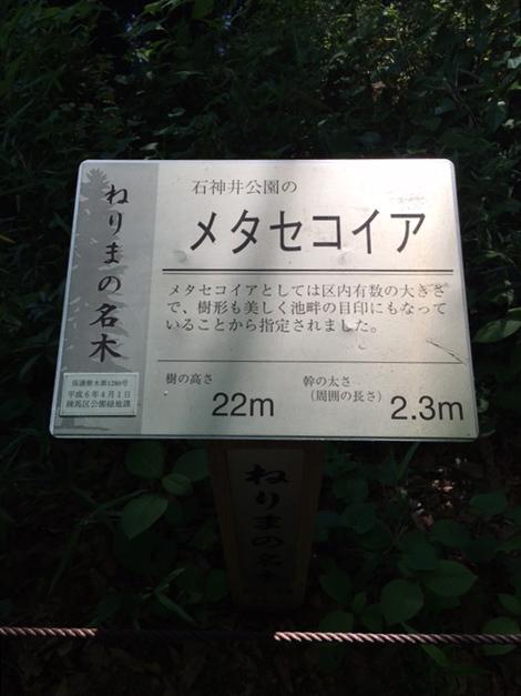 sanpouji09
