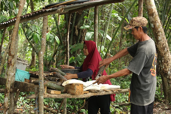 sustainable-rubber-supply-chain-continental-giz-canopy-indonesia-kopie