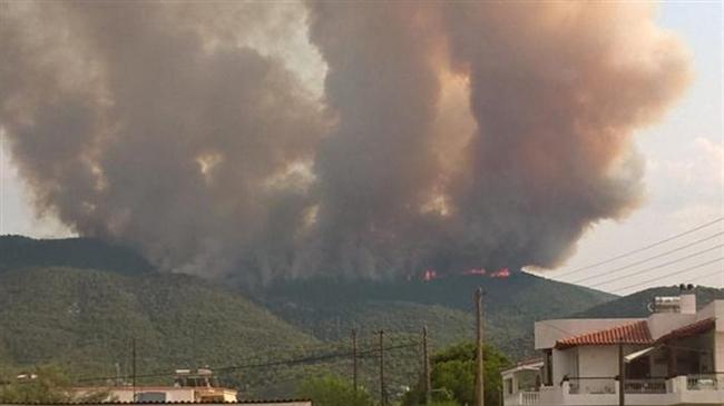 Τωρα: Φωτιά σε δασική έκταση στο Σοφικο Κορινθιας