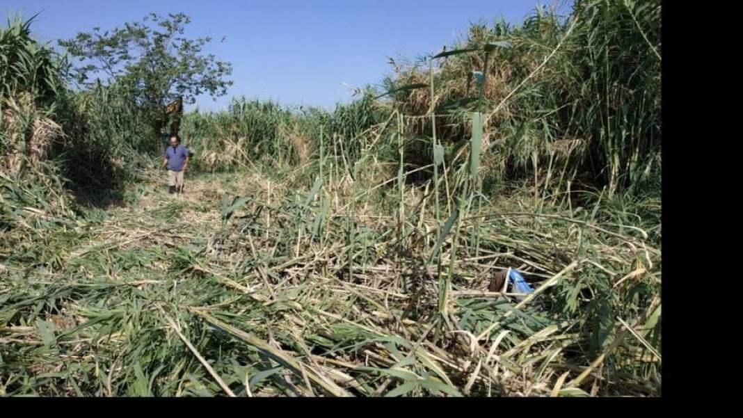 Καθαρισμός ρεμάτων Δήμου Βέλου-Βόχας