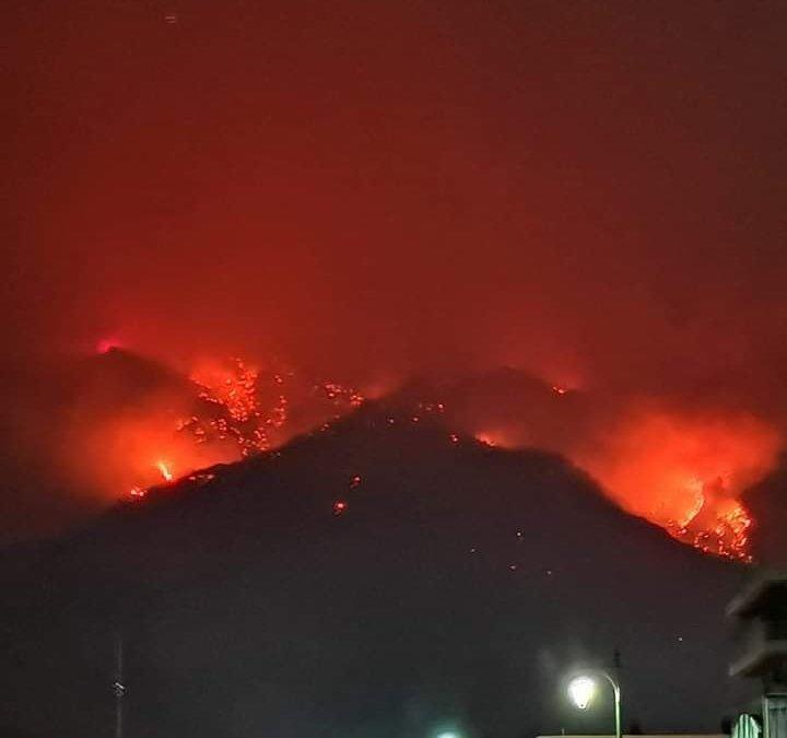 Γ.Γκιώνης: οι Αρμόδιες Υπηρεσίες διερευνούν τα αίτια εκδήλωσης της πυρκαγιάς στα Γεράνεια