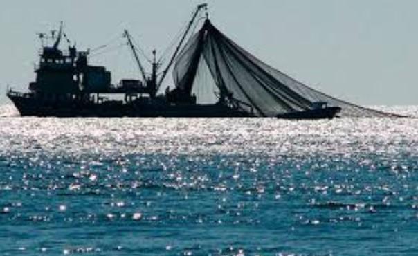 Βιώσιμη Αλιεία στον Κορινθιακό