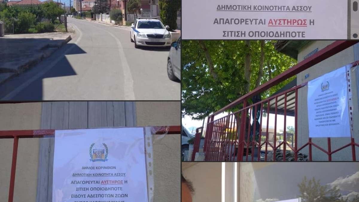 Ότι νάναι. Άγνωστοι έβγαλαν ανακοινώσεις με το λογότυπο του Δήμου εναντίον όσων ταίζουν τα αδέσποτα στον Άσσο