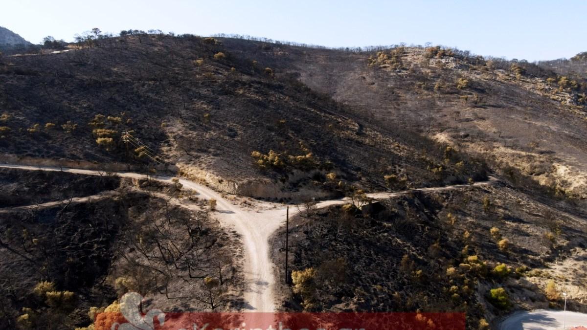 Σοκάρουν οι εικόνες από τις καμένες εκτάσεις στην Κόρινθο
