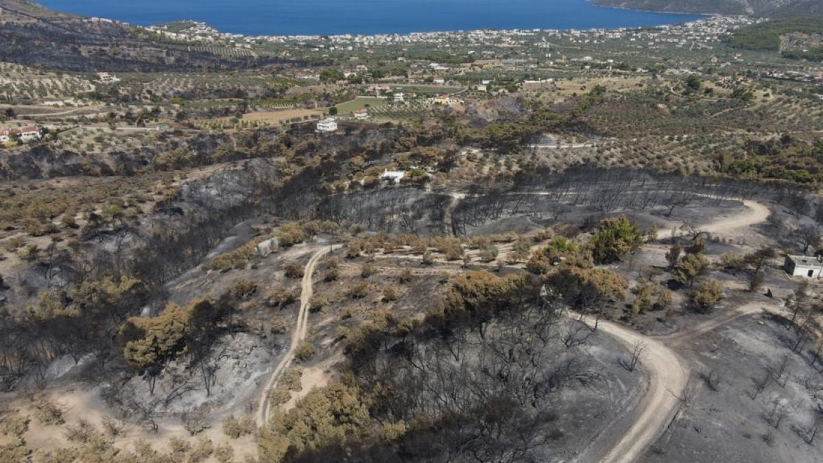 Κλιμάκιο ελέγχου για ζημιές σε αγροτικές καλλιέργειες από την πυρκαγιά στην Κορινθία