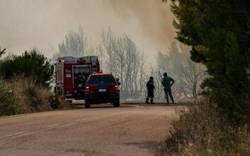 Υψηλός κίνδυνος πυρκαγιάς σήμερα σε αρκετές περιοχές της χώρας
