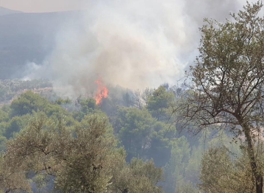 Εργα 3,2 εκ ευρώ εκτιμά η Περιφέρεια ότι απαιτούνται στην πυρόπληκτη περιοχή του Δήμου Κορινθίων