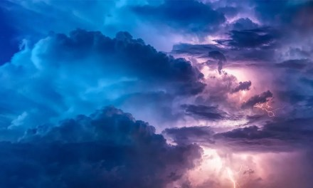 POETRY | The Storm by Jayati Roy