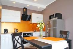 widok na kuchnię / aneks kuchenny w apartamencie w Katowicach na sprzedaż